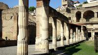 Herculaneum Day Trip with Hotel Pickup from Sorrento