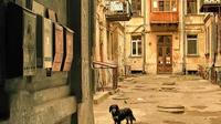 Private Guided Tour of Odessa Hidden Courtyards