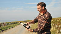3-Hour Small-Group Champagne Region Vineyard Tour from Reims with Wine Tasting and Picnic