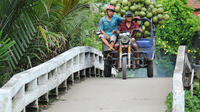 2-Day Small Group Tour to Ho Chi Minh and Mekong Delta from Ho Chi Minh City