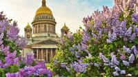 3 Hour Saint-Petersburg Walking Tour with English Speaking Guide