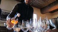 Wine and Food Pairing at the winery in Provence