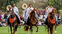 Pachacamac Ruins Tour, El Paso Horse Show and Typical Dances from Lima