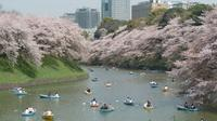 1-Day Tokyo Garden Tour including Breakfast and Lunch