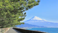 Day Trip to Suruga Bay including a Seafood Lunch and Cruise from Tokyo