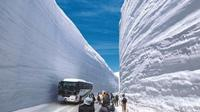 Day Trip to Tateyama Kurobe Alpine Route from Nagoya