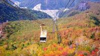 Day Trip to the Daisetsuzan National Park and the Kurodake Ropeway from Sapporo