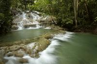 Dunn\'s River Falls Private Tour From Falmouth