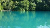 Port Antonio Full-Day Sightseeing Tour from Ocho Rios