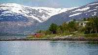 Sightseeing and Fjordcruise with Cabincruiser in Tromso