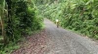 One-Way Bike Tour from San Jose to Quepos