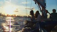 Private Tour: Sailing Trip in Buenos Aires image 1