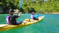 Full-Day Guided Sea Kayak Trip from Picton, Picton Water Activities