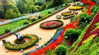 3-Night Ooty Private Luxurious Tour from Coimbatore