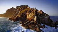 Full-Day Cape Point and Peninsula Tour from Cape Town