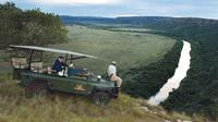 Private Amakhala Private Game Reserve Day Tour from Port Elizabeth