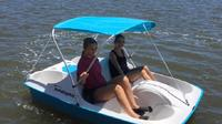 Half-Hour Dolphin Pedal Boat Rental in Daytona Beach