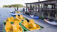 Half-Hour Electric Assisted Pedal Boat Rental in Daytona Beach