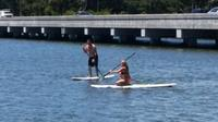 Half-Hour Stand-Up Paddle Board Rental in Daytona Beach