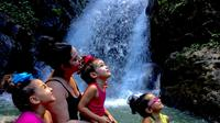 Yunque Rainforest, Luquillo Beach and Bioluminescent Bay Kayak Tour