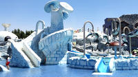 Ras Al Khaimah: Iceland Water Park Full-Day Entrance Ticket