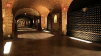 Small-Group Day Tour of Moët et Chandon and Taittinger with Champagne Tasting from Reims