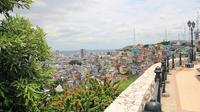 Guayaquil Half-Day City Tour Including The Malecon and Las Pe�as Neighborhood