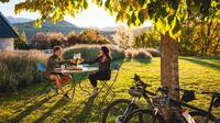 Full-Day Self-Guided Bike Tour of the Wineries, Queenstown Wineries & Vineyards