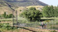 Half Day Bike Tour of Arrow River Trail, Queenstown Tours and Sightseeing