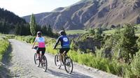 Half-Day Self-Guided Bike Tour of the Wineries, Queenstown Wineries & Vineyards