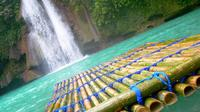 Mantayupan and Kawasan Falls Day Tour from Cebu