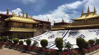 5-Night Central Tibet Monastery Tour to Lhasa, Gyantse, and Shigatse
