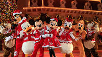 Hong Kong Disneyland Tour with 2-way Ferry Transfers from Macau