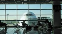 Private Transfer from Borg El Arab Airport to Alexandria Hotels