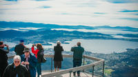 Highlights of Hobart Tour including Bonorong Wildlife Sanctuary and Mt Wellington image 1