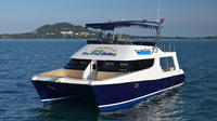 Koh Tao Dive Tour Including 2 Dives for Certified Divers