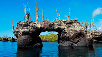 6-Day Galapagos Land Tour: Los Tuneles Program