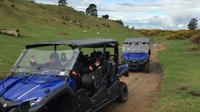 Off-Road 4WD Buggy Adventure from Rotorua, Rotorua Tours and Sightseeing