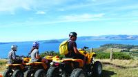Quad Biking Adventure from Rotorua, Rotorua Land Activities