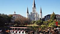 Private French Quarter Walking and City Surrounding Neighborhoods Driving Tour