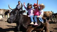 Full-Day Ranch Adventure and Horseback Riding Tour