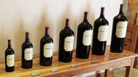 Red Wine Lovers Private Tour from Stellenbosch