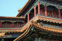 Beijing Lama Temple, Panda Garden and Ancient Altar Day Tour