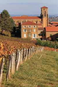 Lyon and Beaujolais Wine Country Tour