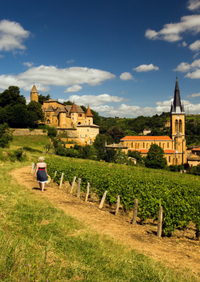 Lyon and Beaujolais Wine Region Day Trip from Paris by TGV Train