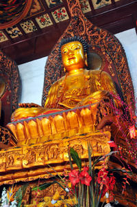 Shanghai Shore Excursion: Half-Day Private City Sightseeing Tour Including Jade Buddha Temple