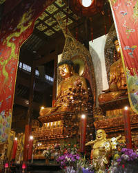 Shanghai Shore Excursion: Private Full-Day City Sightseeing Tour Including Jade Buddha Temple
