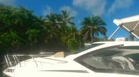 Private Tour: Bay of All Saints Speedboat Experience image 1