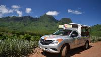 Moorea 4WD Tour Including Belvedere Pineapple Farm and Magic Mountain