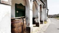 Wine Tasting and History Tour to Eger from Budapest
